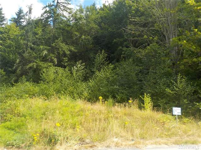 233 Skylar Way, Eatonville, WA 98328 (#1637887) :: My Puget Sound Homes