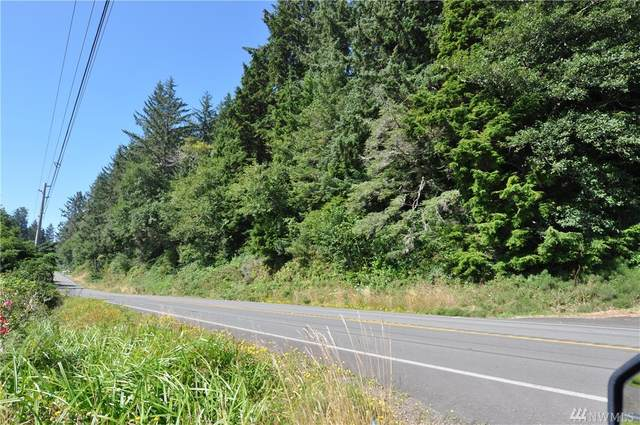 1756 Sr 101, Ilwaco, WA 98624 (#1643731) :: Ben Kinney Real Estate Team