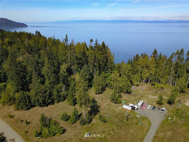 323 Beach Bluff Road, Port Angeles, WA 98363 (#1647402) :: Ben Kinney Real Estate Team