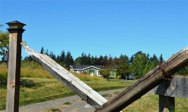 7855 Ham Road, Custer, WA 98240 (#1648186) :: Ben Kinney Real Estate Team
