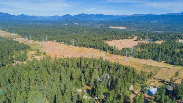 171 Noble Place, Cle Elum, WA 98922 (MLS #1650268) :: Nick McLean Real Estate Group