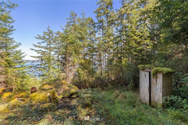 516 Big Foot Road, Friday Harbor, WA 98250 (#1650981) :: Canterwood Real Estate Team