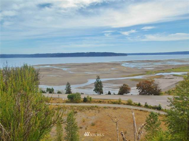 4 Buena Vista Way, Brinnon, WA 98320 (#1651207) :: NW Home Experts