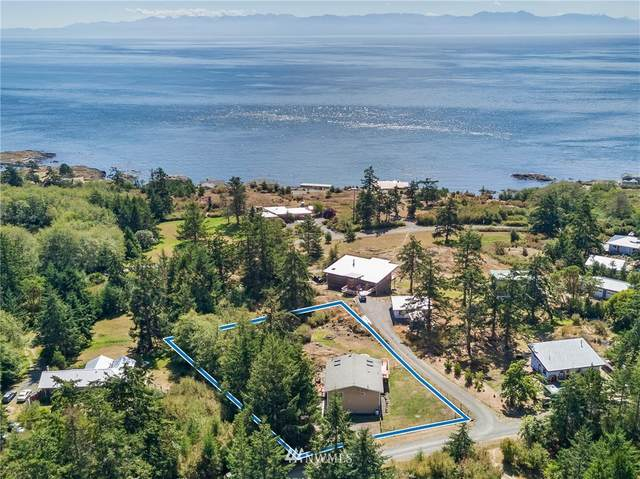 43 Grand View Drive, San Juan Island, WA 98250 (#1655831) :: Ben Kinney Real Estate Team