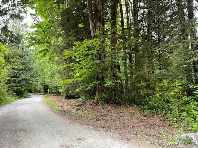 0 Emerald Lane, Marblemount, WA 98267 (#1656699) :: The Kendra Todd Group at Keller Williams
