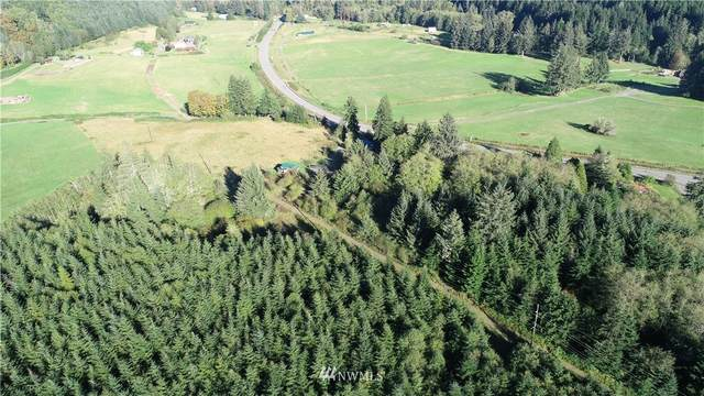9999 Magnolia Road, Beaver, WA 98305 (#1660565) :: Canterwood Real Estate Team