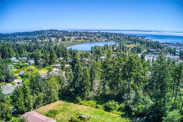 999 Holcomb Street, Port Townsend, WA 98368 (#1662799) :: Better Homes and Gardens Real Estate McKenzie Group