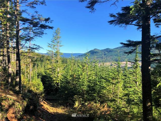 0 327th Place, Ravensdale, WA 98501 (#1665323) :: Pickett Street Properties