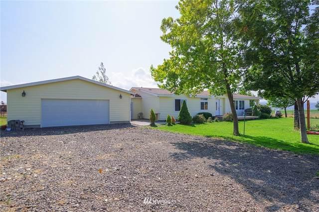 2680 Carroll Road, Ellensburg, WA 98926 (#1666447) :: Northwest Home Team Realty, LLC