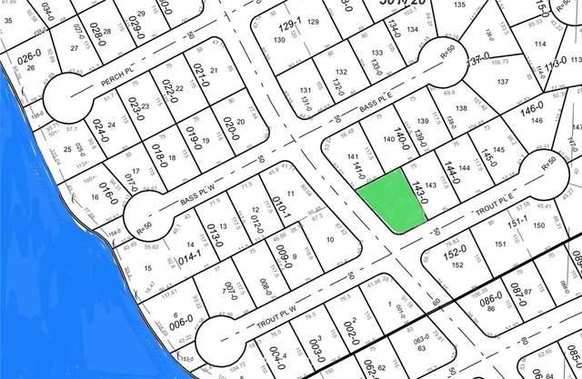 10623 107th Street Ct, Anderson Island, WA 98303 (#1667542) :: Hauer Home Team