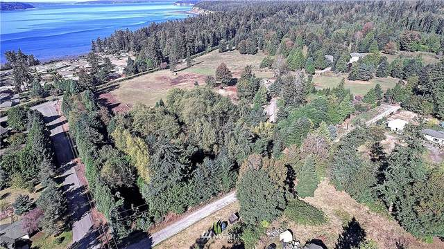 1387 Dallman Road, Camano Island, WA 98282 (#1668607) :: NextHome South Sound