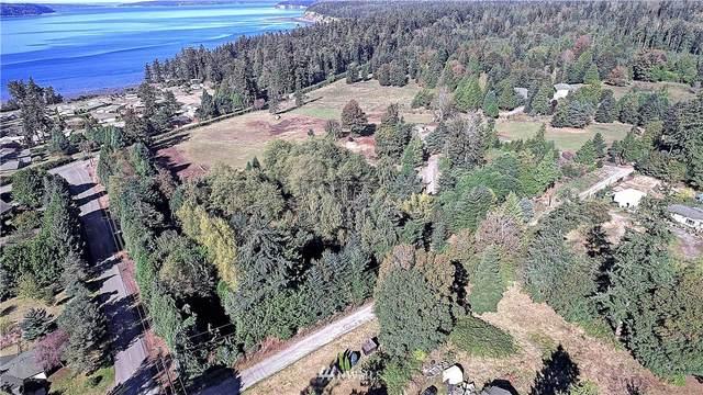 1387 Dallman Road, Camano Island, WA 98282 (#1668607) :: M4 Real Estate Group