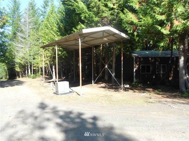 260 NE Kissin Tree Lane, Tahuya, WA 98588 (#1672743) :: NW Home Experts