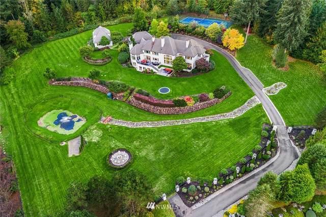 24525 NE 126th Street, Duvall, WA 98019 (#1673188) :: NW Home Experts
