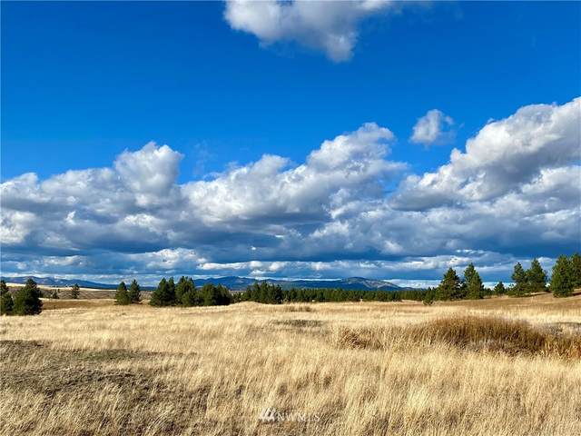 0 N Mcdowell Canyon Road, Creston, WA 99117 (#1674899) :: M4 Real Estate Group