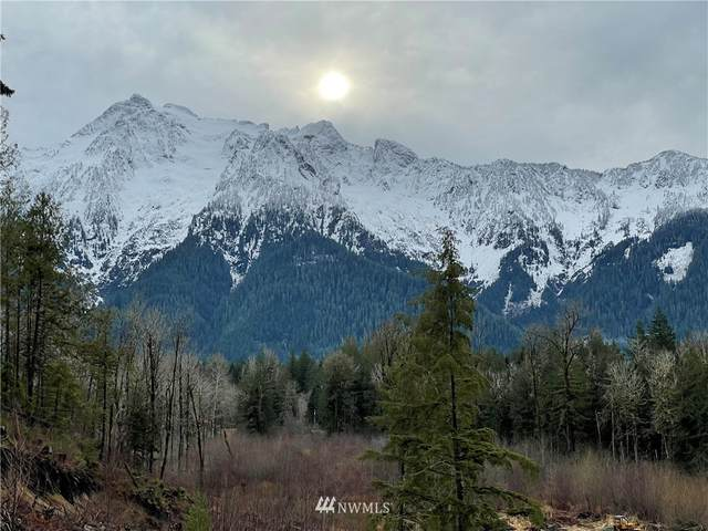 0 State Route 530, Darrington, WA 98241 (#1675157) :: Better Properties Real Estate