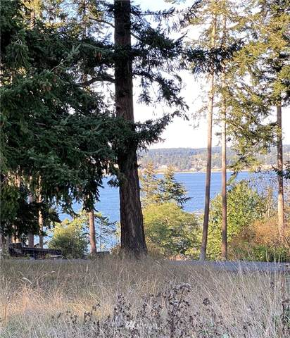 0 Sherman Road, Coupeville, WA 98239 (#1675954) :: Mike & Sandi Nelson Real Estate