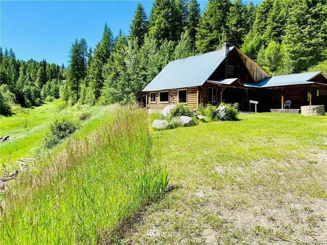 49 Lilly Creek Road, Republic, WA 99166 (#1677872) :: Alchemy Real Estate