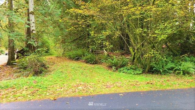 7358 Skagit View Dr, Concrete, WA 98237 (#1679153) :: NW Home Experts