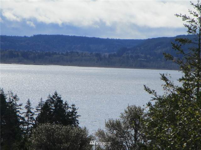 1 Tr1 Of Sp #2333, Tahuya, WA 98588 (#1679298) :: Better Homes and Gardens Real Estate McKenzie Group