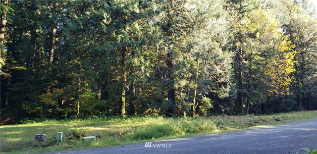 91 303rd (Lot #4) Place SE, Issaquah, WA 98027 (#1681262) :: M4 Real Estate Group