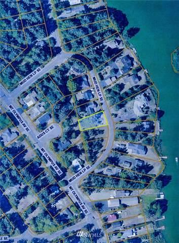 459 Mud Hen Loop SE, Ocean Shores, WA 98569 (#1681673) :: Mike & Sandi Nelson Real Estate