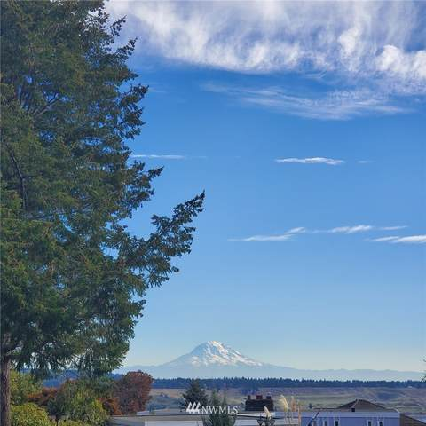 1215 Pilchuck Place, Fox Island, WA 98333 (#1684995) :: Canterwood Real Estate Team