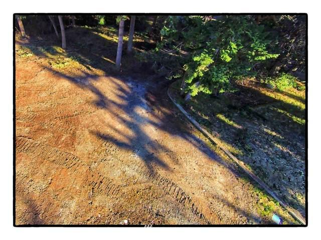 4 Eagles Nest Drive, La Conner, WA 98257 (#1689919) :: TRI STAR Team | RE/MAX NW