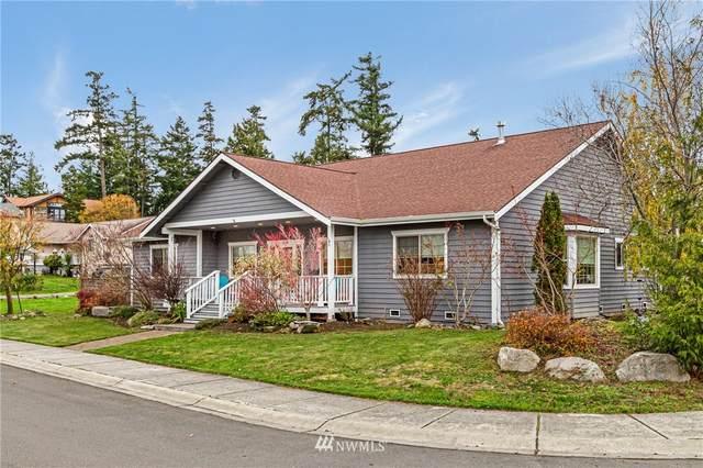 810 Sunday Drive, San Juan Island, WA 98250 (#1691224) :: Alchemy Real Estate