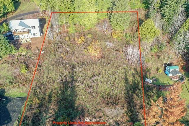 41 N Mardell Avenue, Hoodsport, WA 98548 (#1691562) :: M4 Real Estate Group