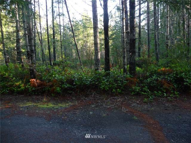 120 N Broken Arrow Drive, Hoodsport, WA 98584 (#1691633) :: Engel & Völkers Federal Way