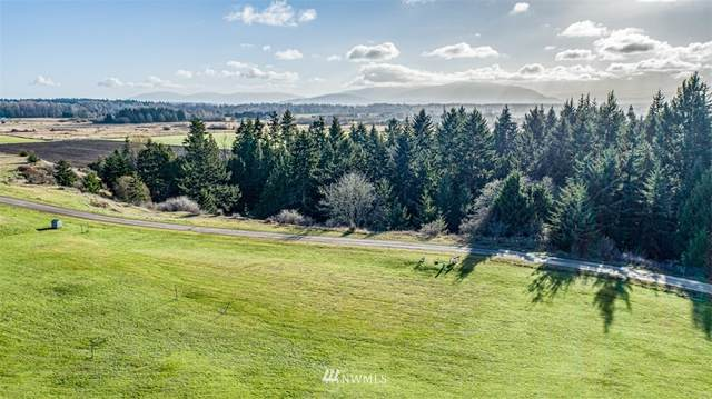 9999 Quiet Waters Lane, Sequim, WA 98382 (MLS #1692275) :: Brantley Christianson Real Estate