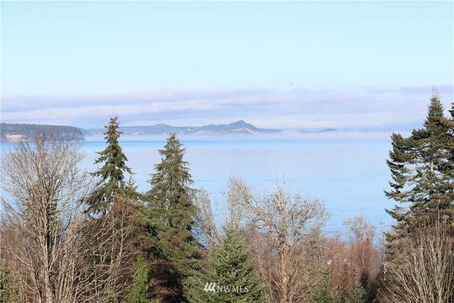 34 Clear Morning Lane, Camano Island, WA 98282 (#1710705) :: Better Properties Real Estate
