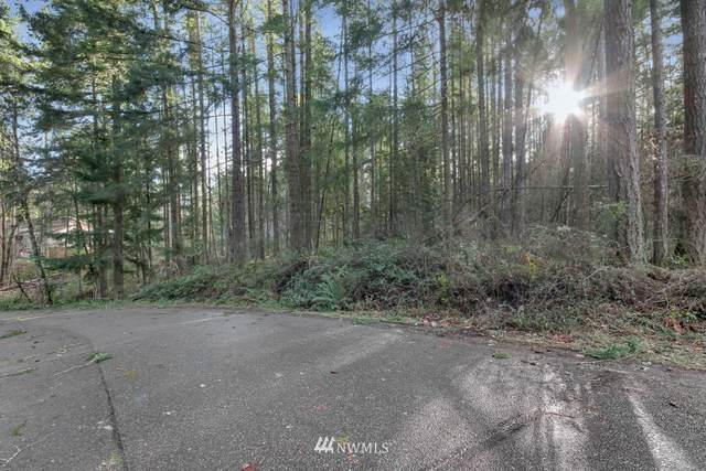 22209 SE Bluewater Drive, Yelm, WA 98597 (MLS #1711042) :: Community Real Estate Group