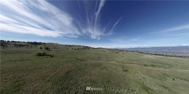 0 Omak Mountain Road, Omak, WA 98841 (#1713926) :: Shook Home Group