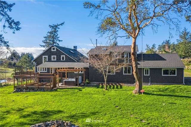 230 Skyview Drive, Friday Harbor, WA 98250 (#1715744) :: TRI STAR Team | RE/MAX NW