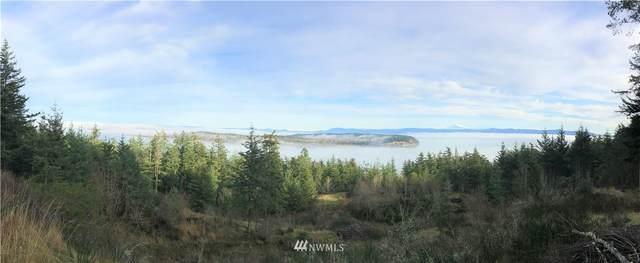 3060 Mt Vista Drive, Lummi Island, WA 98262 (#1716904) :: Keller Williams Realty