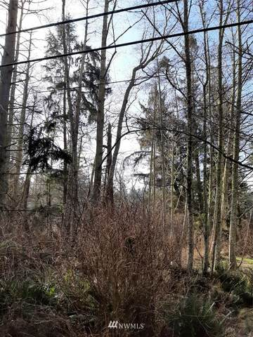 0 Gramayre, Coupeville, WA 98239 (#1720414) :: Priority One Realty Inc.