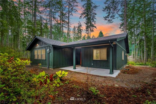 11008 118th Avenue Ct, Anderson Island, WA 98303 (#1721538) :: Costello Team