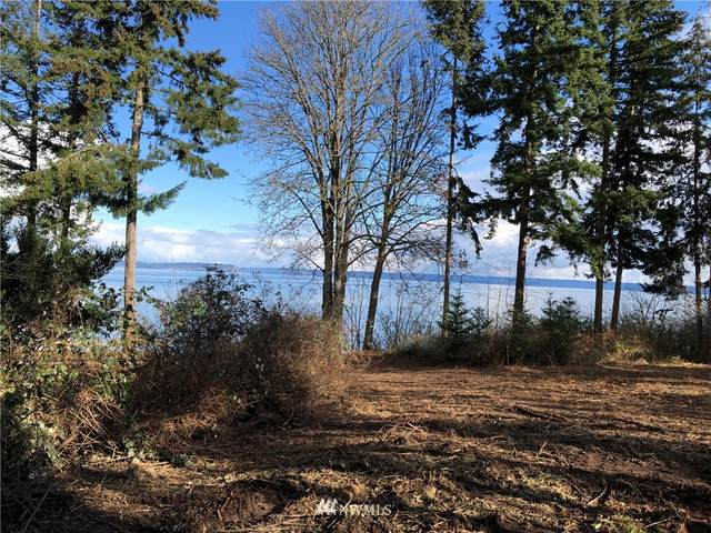 31560 Sunrise Beach Drive NE, Kingston, WA 98346 (#1726109) :: TRI STAR Team | RE/MAX NW