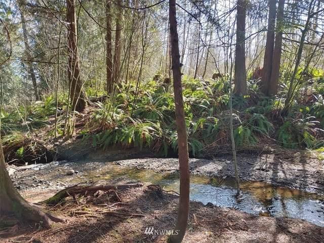 22414 Mount Vernon Big Lake Road, Mount Vernon, WA 98274 (#1736467) :: Keller Williams Western Realty