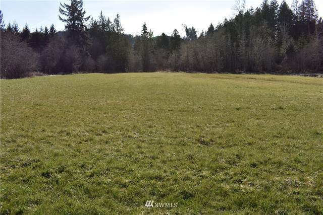 1247 Bunker Creek Road, Chehalis, WA 98532 (#1742905) :: Ben Kinney Real Estate Team