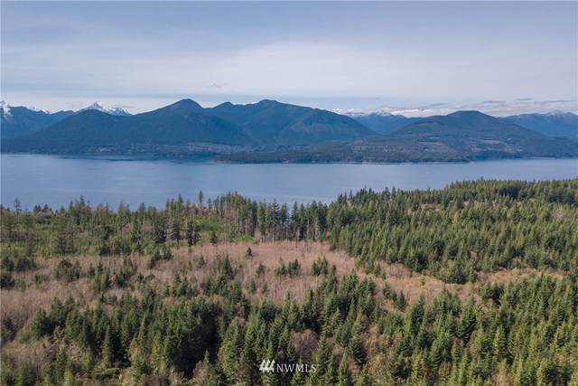 0 Mount Walker View Drive, Quilcene, WA 98376 (#1744928) :: Icon Real Estate Group