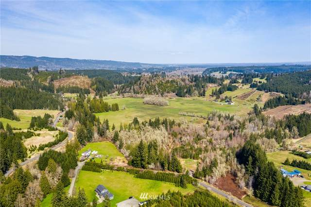 133 Jylha Road, Rochester, WA 98579 (#1749985) :: Pacific Partners @ Greene Realty