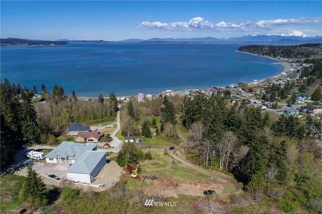 35 Clear Morning Lane, Camano Island, WA 98282 (#1750811) :: TRI STAR Team | RE/MAX NW