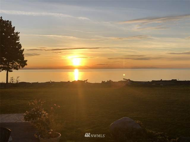 585 Marine Drive, Point Roberts, WA 98281 (#1756138) :: Northern Key Team