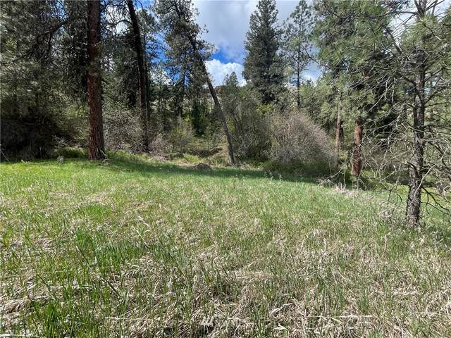 0 S Touchet Rd., Dayton, WA 99328 (#1757724) :: Better Homes and Gardens Real Estate McKenzie Group