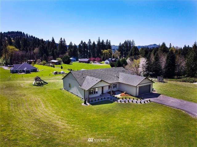 3830 Lewis River Road, Woodland, WA 98474 (#1759620) :: Beach & Blvd Real Estate Group