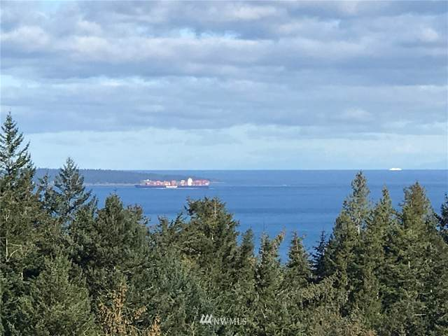 565 Harper Rd, Orcas Island, WA 98245 (#1759719) :: Tribeca NW Real Estate
