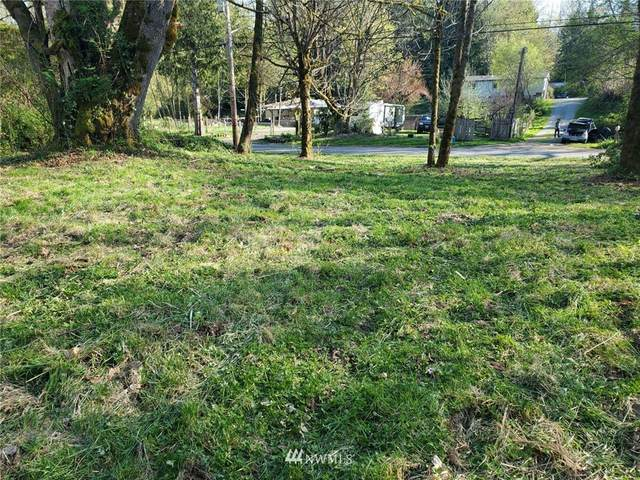 0 Cape Horn Drive, Concrete, WA 98237 (#1760053) :: Tribeca NW Real Estate